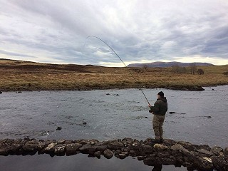 Fishing Report - February 2020